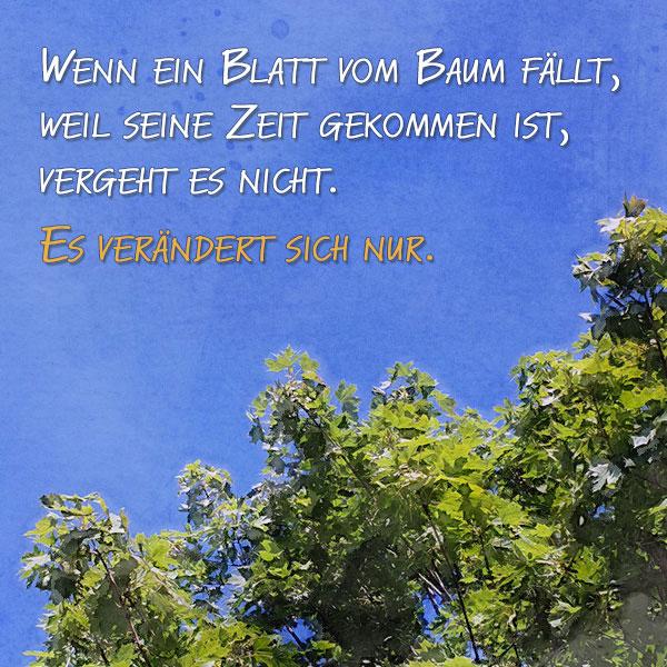 Trauerspruch: Wenn ein Blatt vom Baum fällt, weil seine Zeit gekommen ist, vergeht es nicht. Es verändert sich nur.